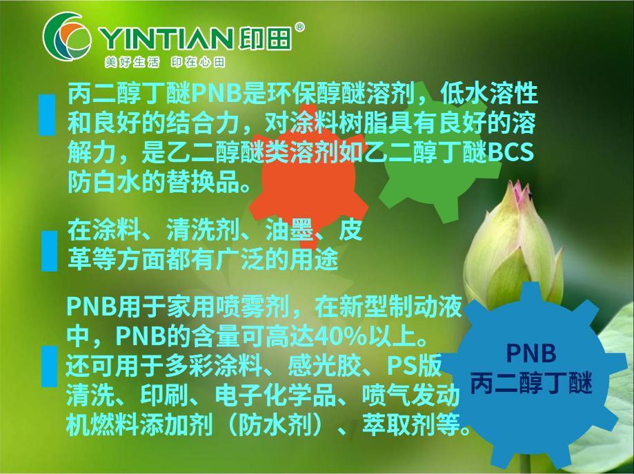 丙二醇丁醚PNB