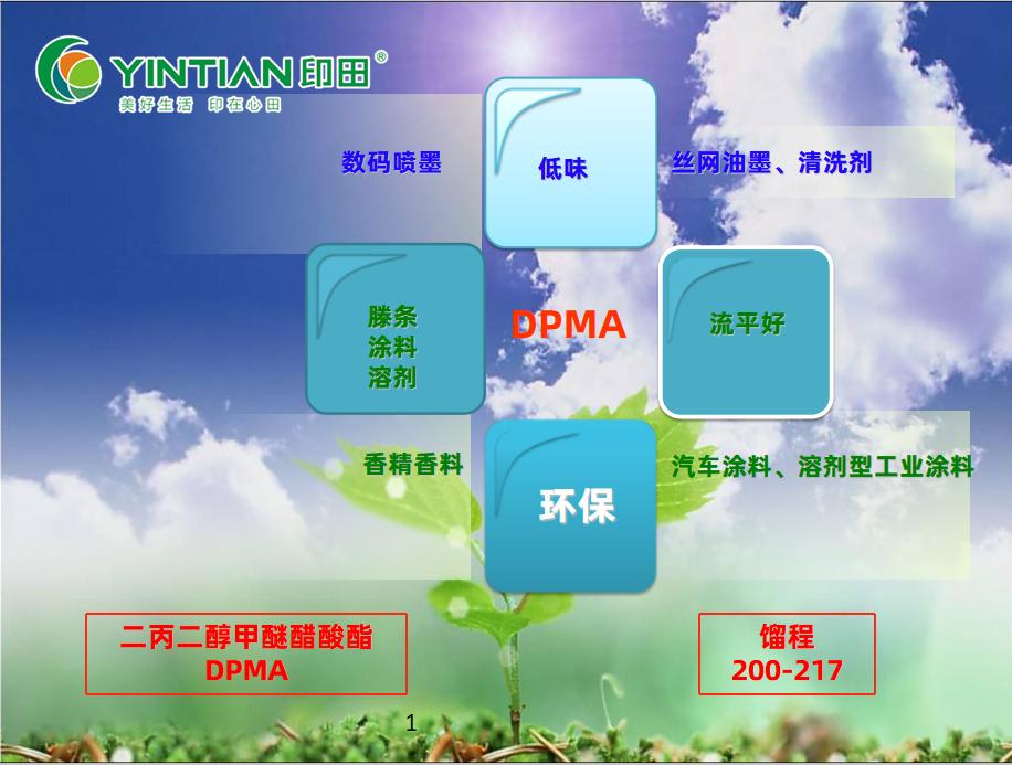 二丙二醇甲醚醋酸酯DPMA